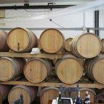 Leuta wine-tasting
