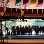 The circus at callaway