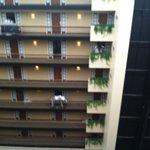 8th floor veiw
