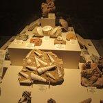 Excellent Exhibits Dakota Dinosaur Museum