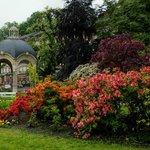 Дворжаковы сады