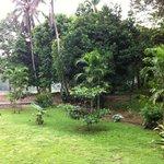 Photo de Sukau Evergreen Lodge