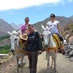 Ballade à dos de mules, à Imlil.