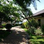 Villa area walkways to the beach & pool & dining area