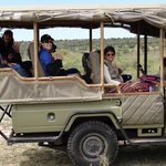 Part of our group enjoying a game drive.