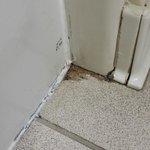 Gross - Tub and floor