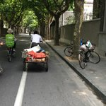 Cycling through the French Concession Area