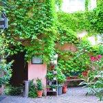 Ein romantischer Hinterhof