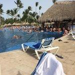 Swim in bar in the pool areas