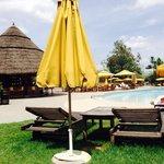 Addis pool
