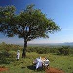 private bush breakfast