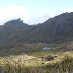 Pq.Nacional do Itatiaia - Parte Alta