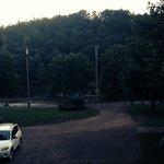 Zdjęcie 875698