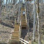 лестница в долине реки Гауя
