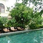 la piscine dans le jardin