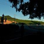 Vineyards opposite the Gables B & B