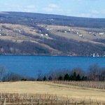 Seneca Lake, Fox & the Grapes B & B