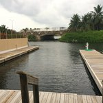 Dock area near Periwinkles and Resort side where there are Tarpons.