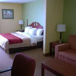 King Suite Guest Room