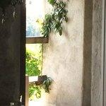 Room y Terraza