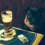 Coco having a beer and smoke at the bar