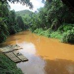Paseo en canoa bamboo