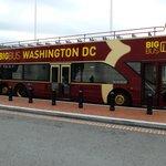 Clean bus