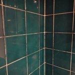 mouldy tiles