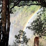 Rainbow within the gorge
