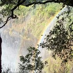Rainbow in the rainforest on the side of the falls