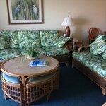 living room (206)