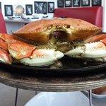 Crabby goodness