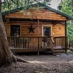 Cabin 6, 1 bedroom, sleeps 4, futon, full kitchen, full bath, wifi, Direct TV, all inclusive.