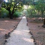 chemin pieton