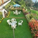 Garden in frot of the hotel
