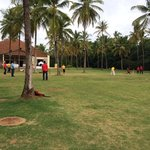 Cricket Ground & Party Lawn