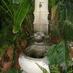 little fountain