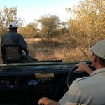 Safari vehicle with driver & spotter