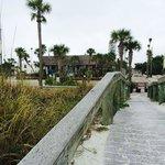 Sabal from Beach Walkway