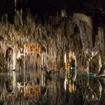 Fun cenote to visit.