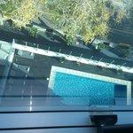 Vista de la pileta desde la habitación