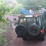Tanzania safari tour to Lake Manyara, Ngorongoro and Serengeti.
