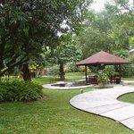 Magnificent garden