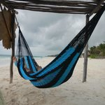 Hammocks for use