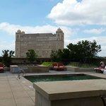 Peaceful rooftop pool