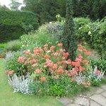 Clare College Gardens