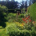 Gardens x
