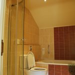 Bathroom to Delphinium Room