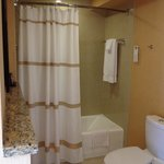 Jr Suite Tub and Shower