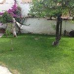 jardin hamac